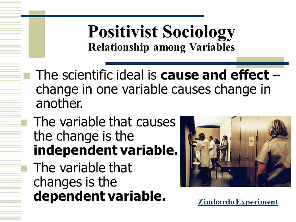 Positivist Sociology Relationship among Variables