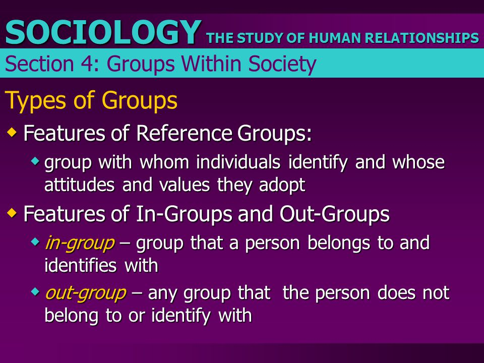 Types of Groups Section 4: Groups Within Society