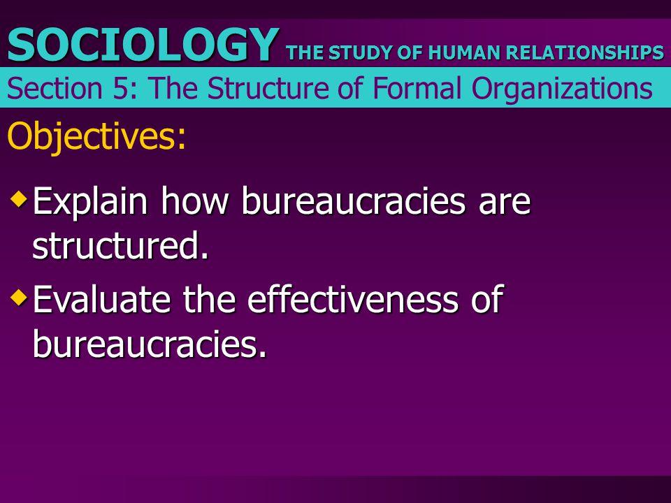 Explain how bureaucracies are structured.