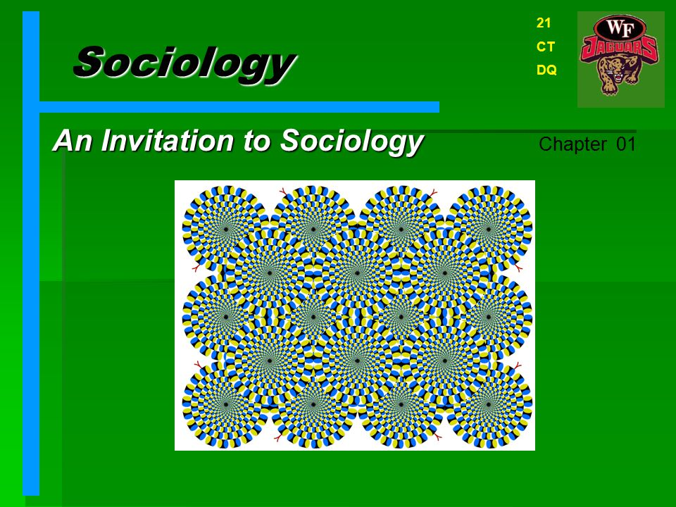 An Invitation to Sociology Chapter 01
