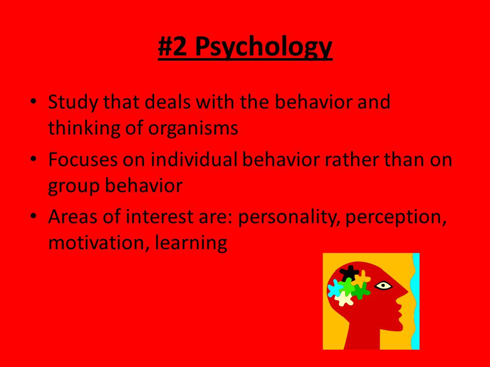 #2 Psychology Study that deals with the behavior and thinking of organisms. Focuses on individual behavior rather than on group behavior.