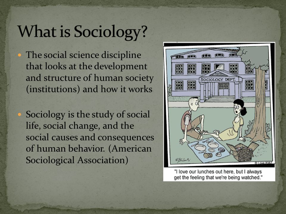 """an analysis of sociological and structural explanations of criminality in society The second type of explanation follows from conflict theory and is a structural explanation that focuses on problems in american society that produce poverty table 23 """"explanations of poverty"""" summarizes these explanations."""