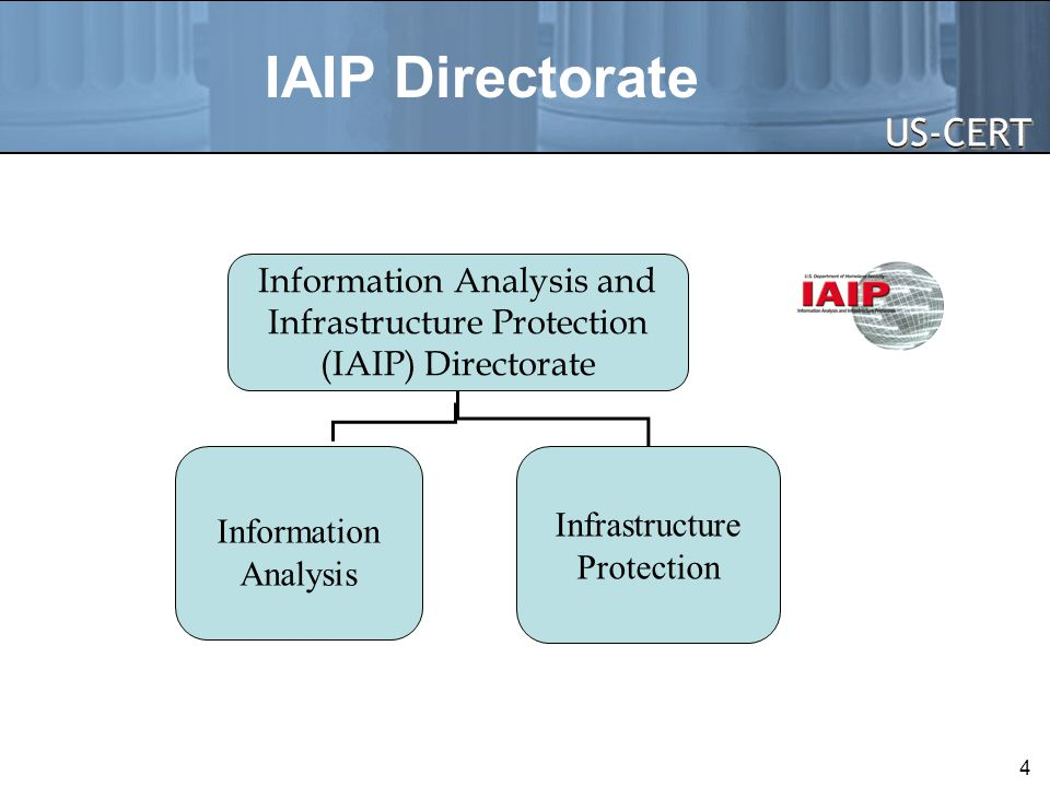 Information Analysis and Infrastructure Protection (IAIP) Directorate