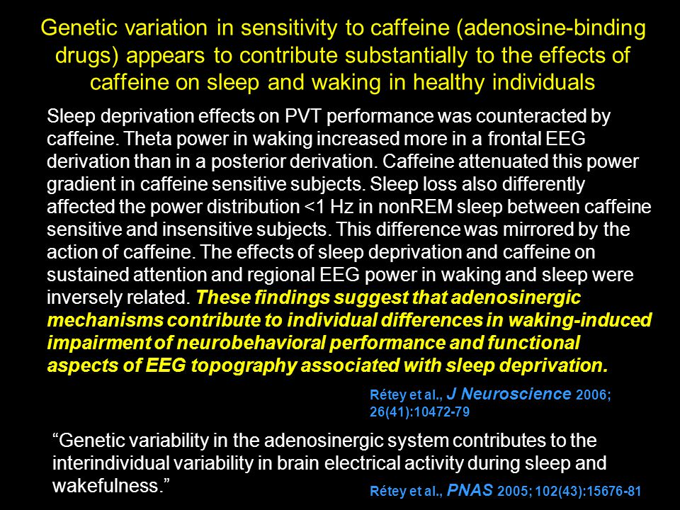 the effects of sleep on cognition Objective: we aimed to build upon the state of knowledge about the impacts of  sleep disruption into the domain of complex cognitive task performance for.