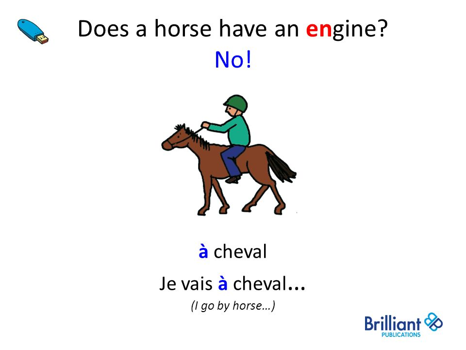 Does a horse have an engine No!