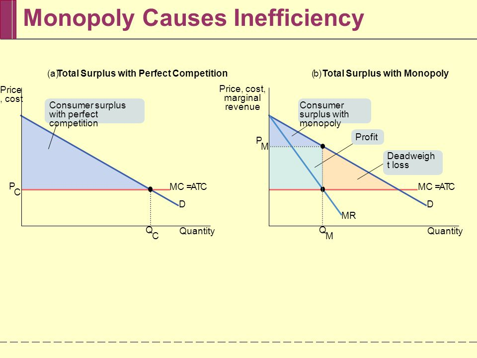 reasons for inefficiency in monopolies Monopolistic markets do not meet the criteria for the most important kind of social  efficiency - allocative efficiency if the market is allocative.
