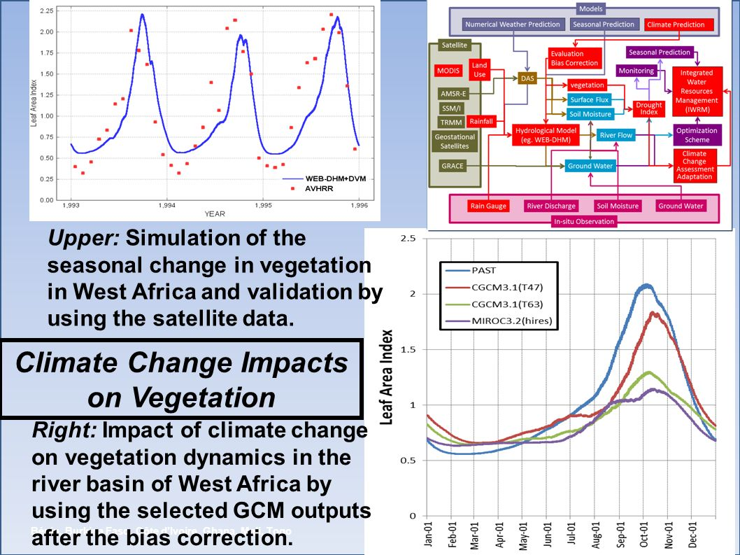Climate Change Impacts on Vegetation