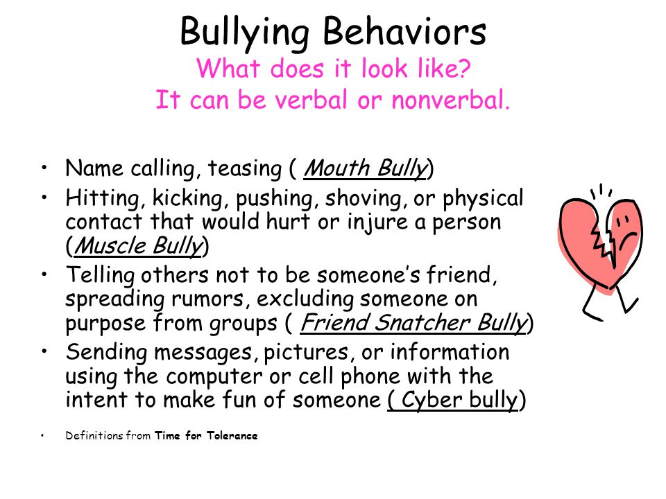 Bullying Behaviors What does it look like