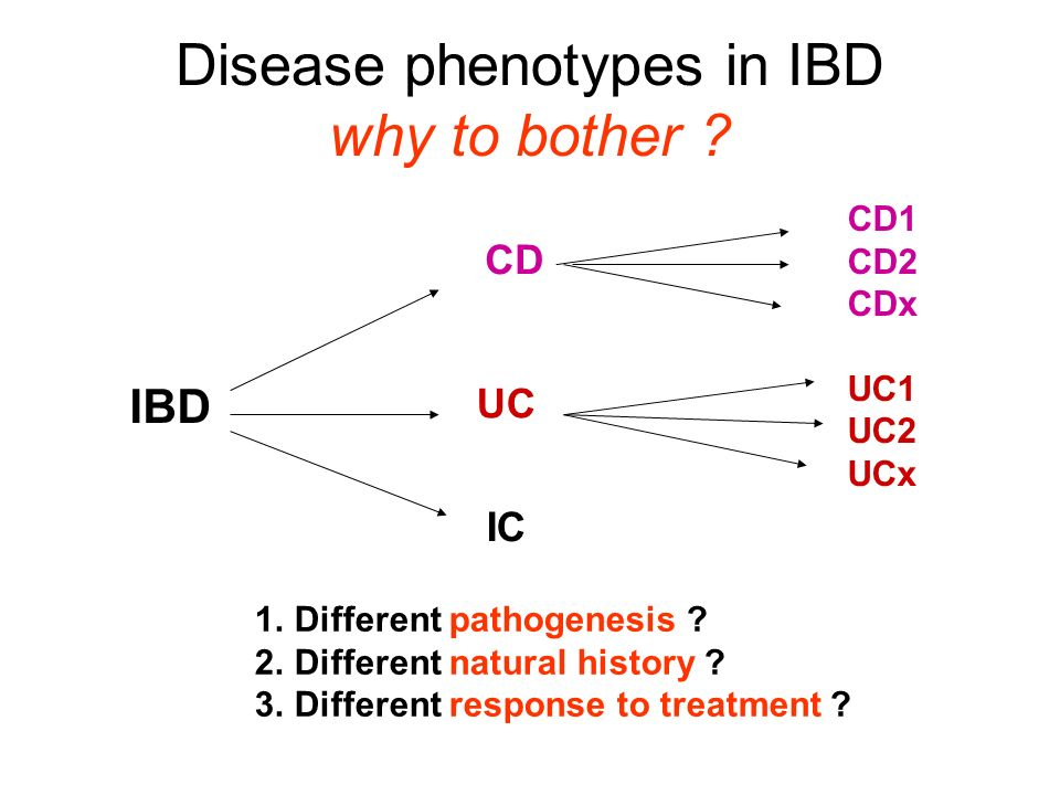 Disease phenotypes in IBD why to bother