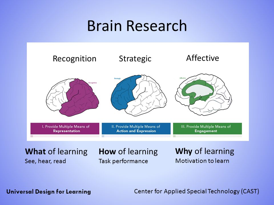 Brain Research Classroom Design ~ Universal design for learning udl ppt download