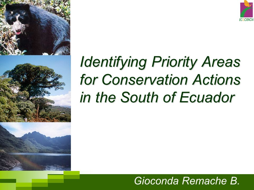 Identifying Priority Areas for Conservation Actions in the South of Ecuador