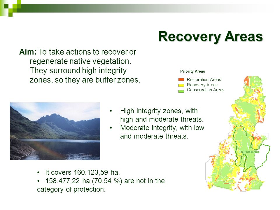 Recovery AreasAim: To take actions to recover or regenerate native vegetation. They surround high integrity zones, so they are buffer zones.