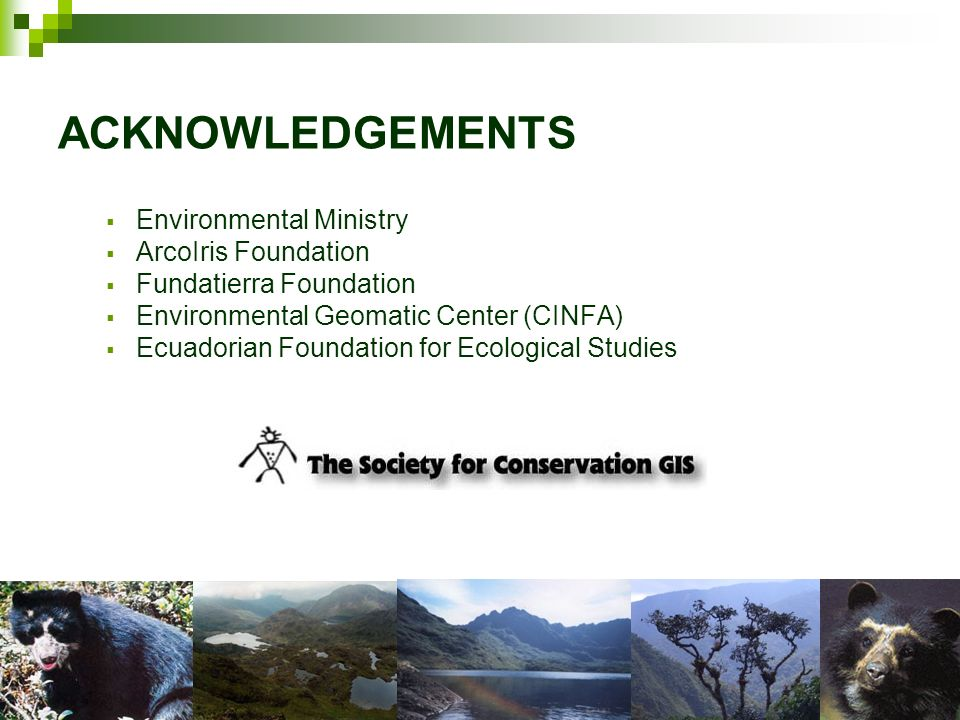 ACKNOWLEDGEMENTS Environmental Ministry ArcoIris Foundation