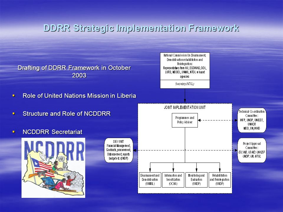 DDRR Strategic Implementation Framework