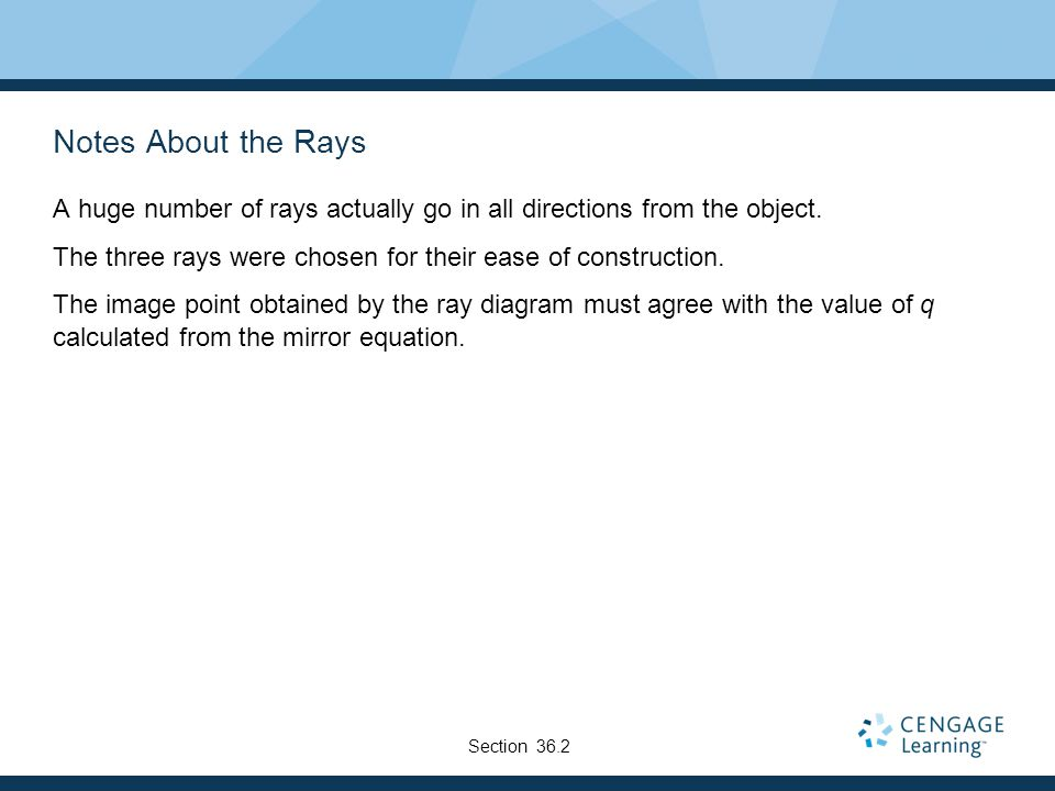 Notes About the Rays