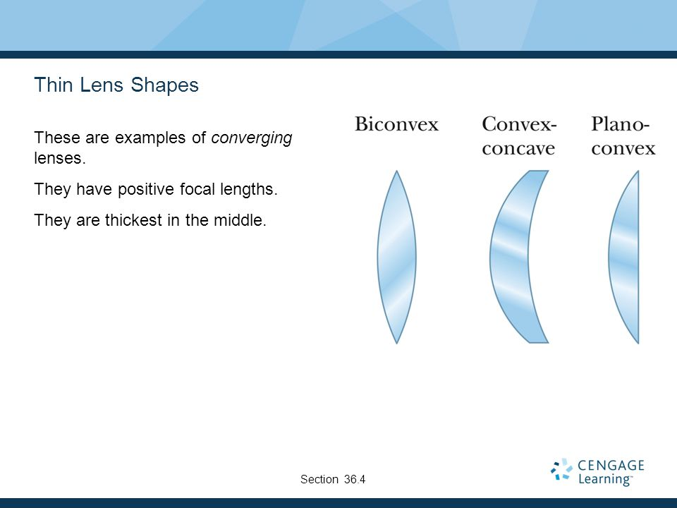 Thin Lens Shapes These are examples of converging lenses.