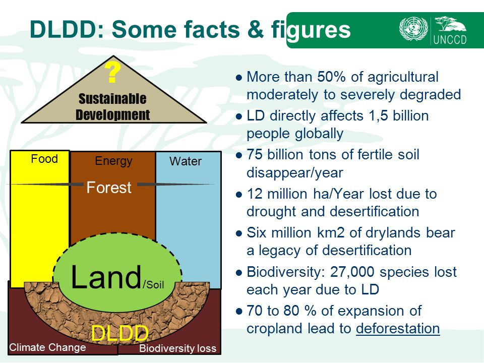DLDD: Some facts & figures