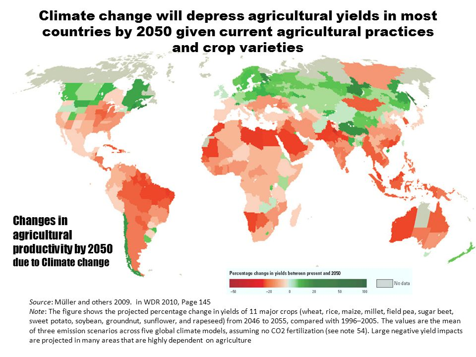 Climate change will depress agricultural yields in most countries by 2050 given current agricultural practices and crop varieties