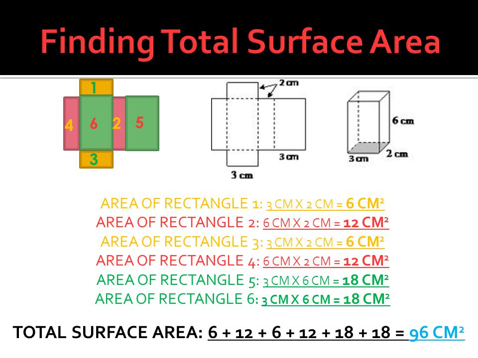 Finding Total Surface Area