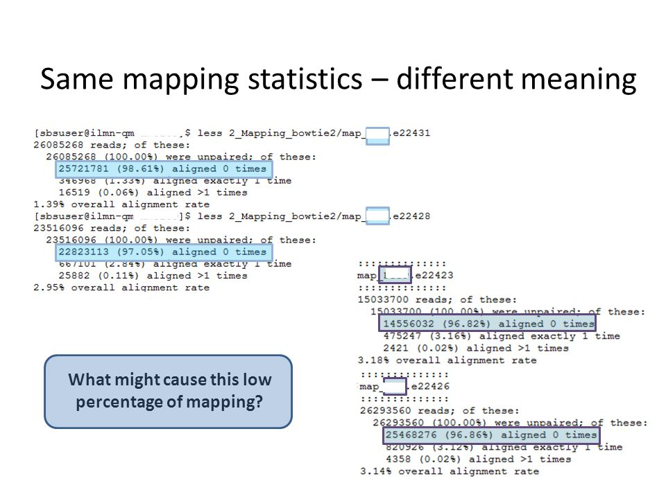 Same mapping statistics – different meaning