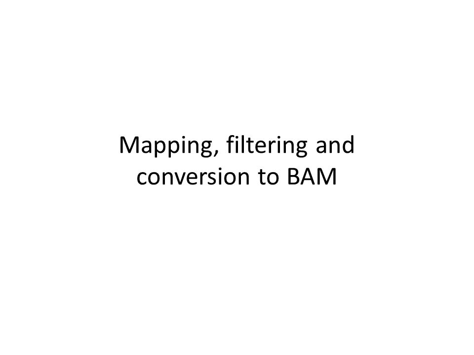 Mapping, filtering and conversion to BAM