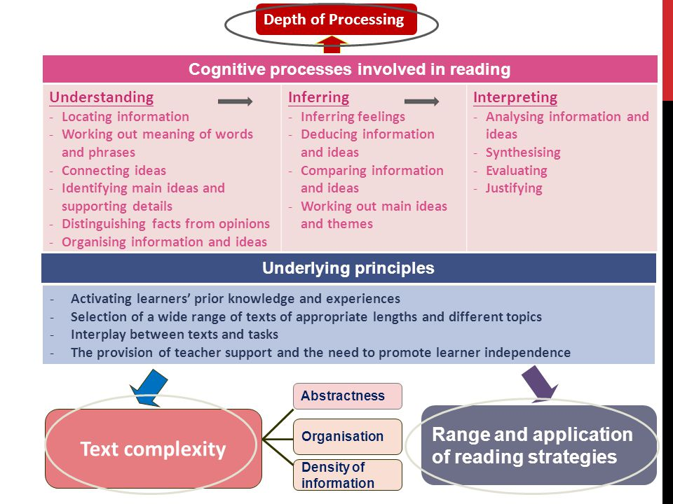 Cognitive processes involved in reading Underlying principles
