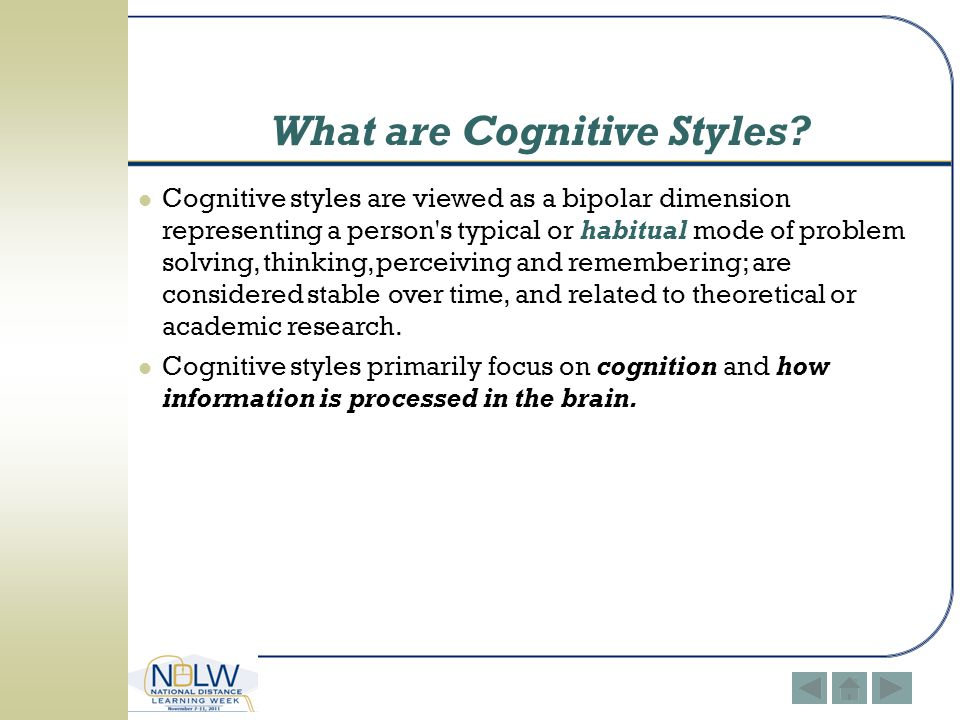 What are Cognitive Styles