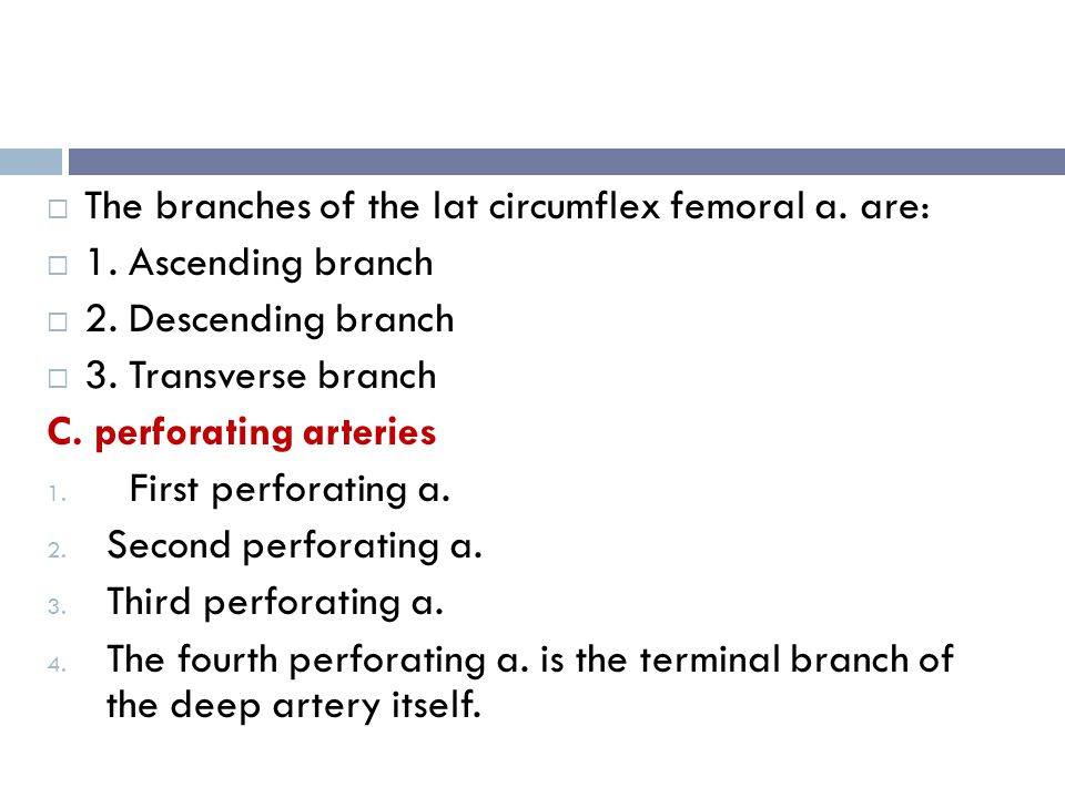 The branches of the lat circumflex femoral a. are: