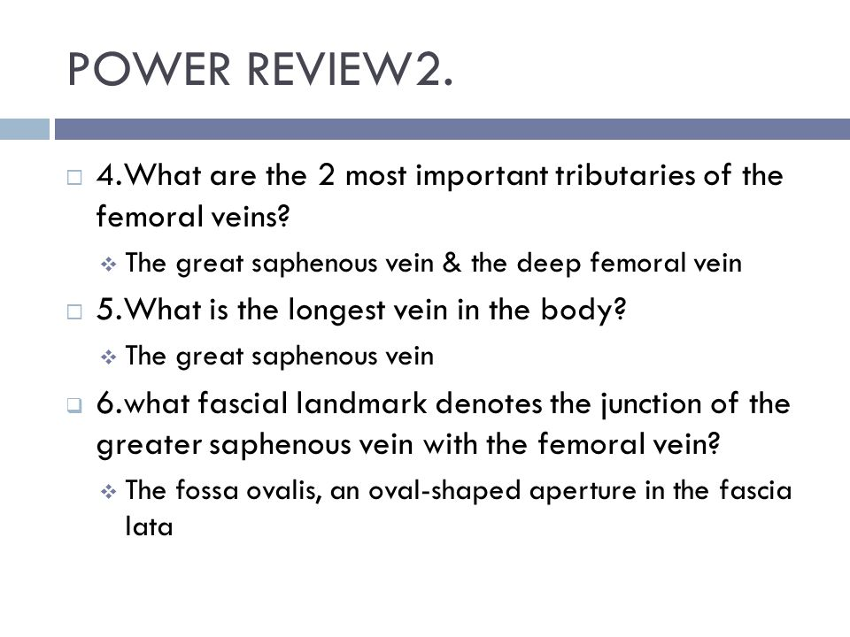 POWER REVIEW2. 4.What are the 2 most important tributaries of the femoral veins The great saphenous vein & the deep femoral vein.
