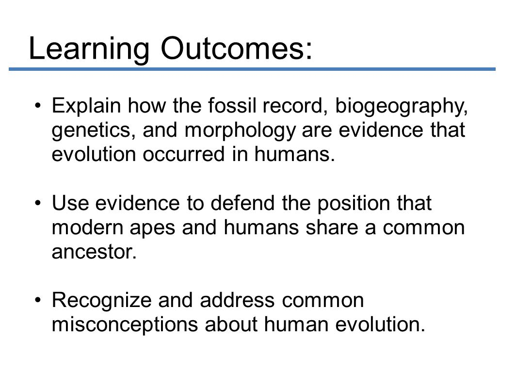 Evidence for Hominin Evolution ppt video online