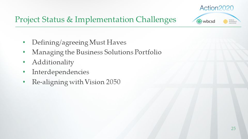 Project Status & Implementation Challenges