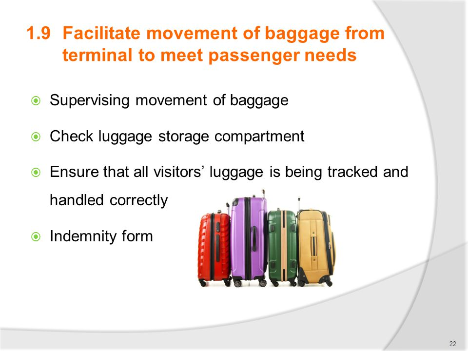1.9 Facilitate movement of baggage from terminal to meet passenger needs