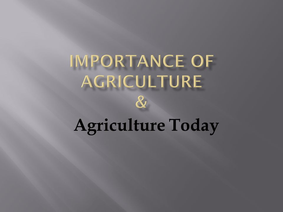 Importance of Agriculture &