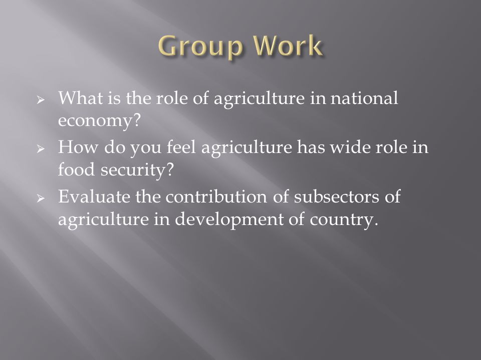Group Work What is the role of agriculture in national economy