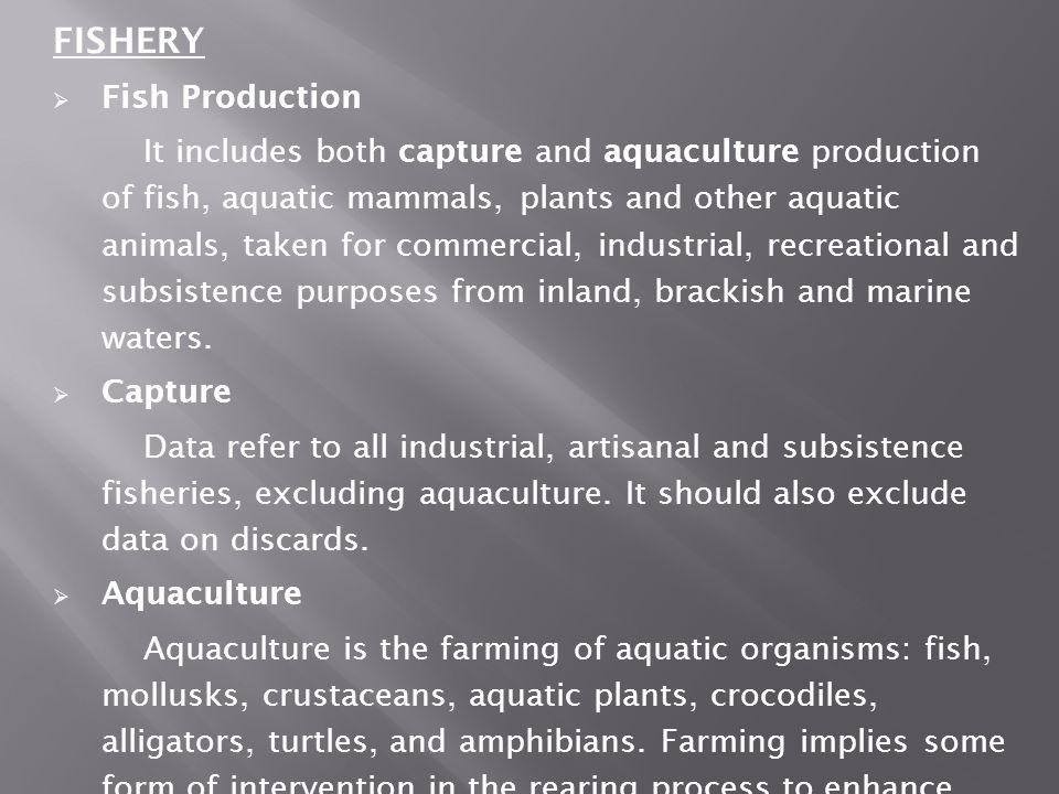 FISHERY Fish Production