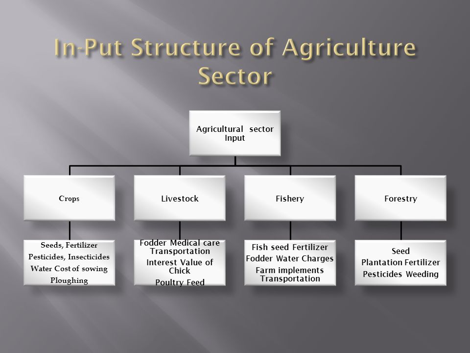 In-Put Structure of Agriculture Sector