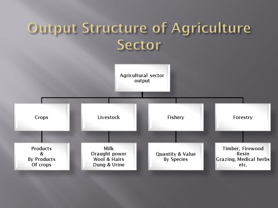Output Structure of Agriculture Sector