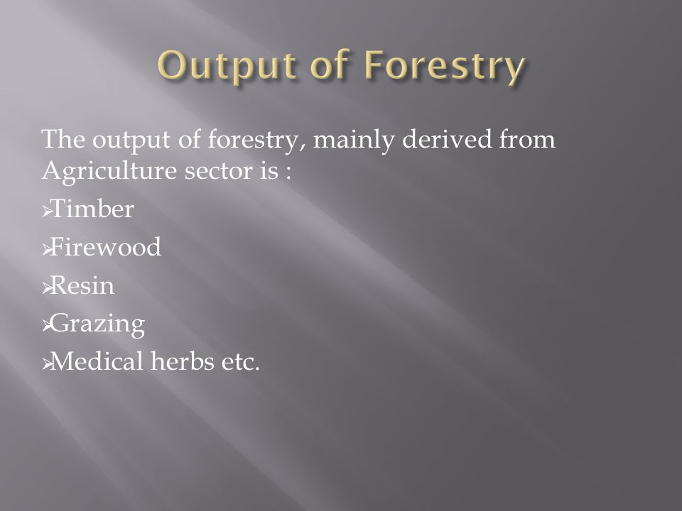Output of Forestry The output of forestry, mainly derived from Agriculture sector is : Timber. Firewood.