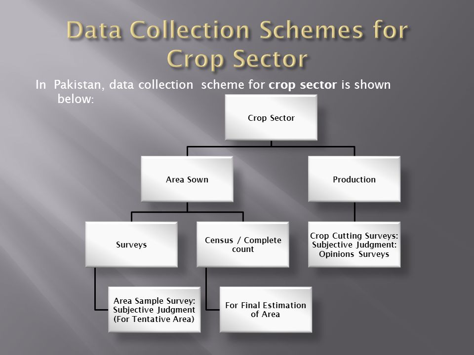 Data Collection Schemes for Crop Sector