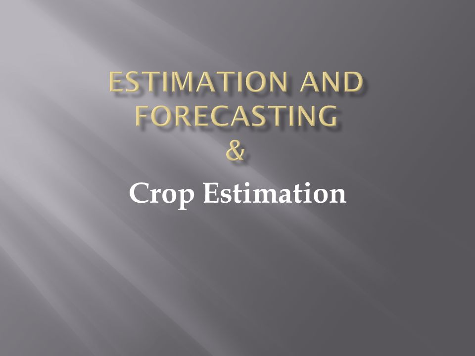 Estimation and Forecasting &
