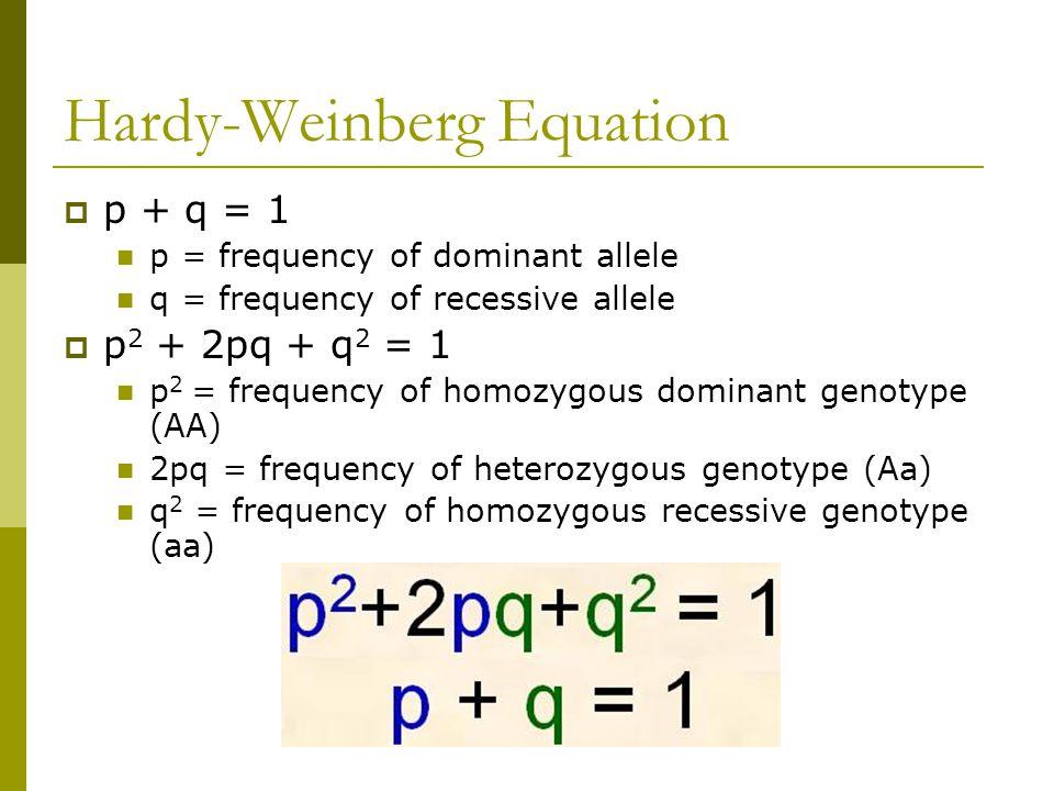 Hardy Weinberg Equation Jennarocca – Hardy Weinberg Problems Worksheet