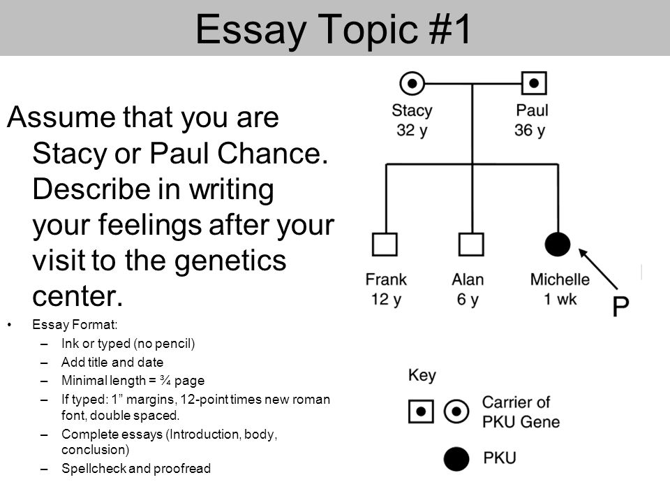 scene michelle is saved by the starving bacteria ppt video  14 essay