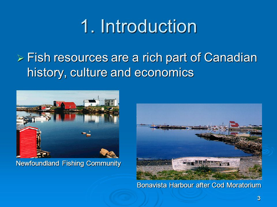 an introduction to the history and culture of canada Discover more about the history and culture of canada before you take your trip  visit sta travel today and find out how canada got its independence and how.