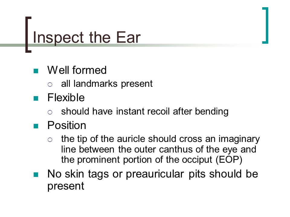Inspect the Ear Well formed Flexible Position