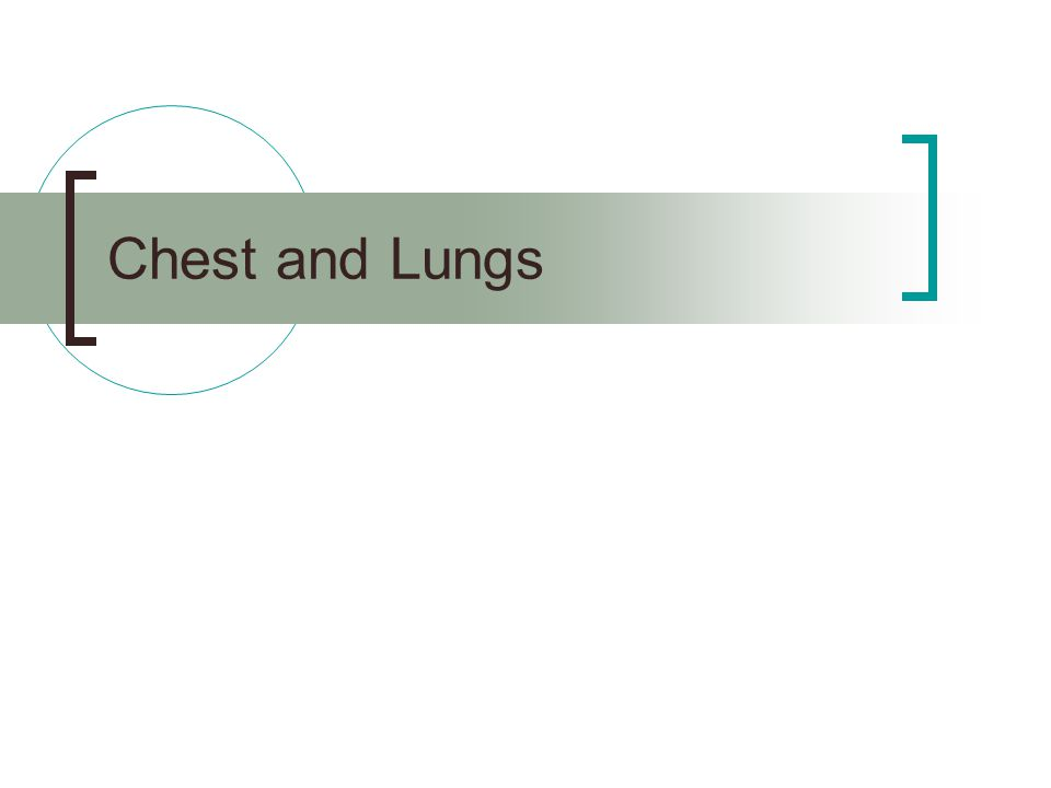 Chest and Lungs