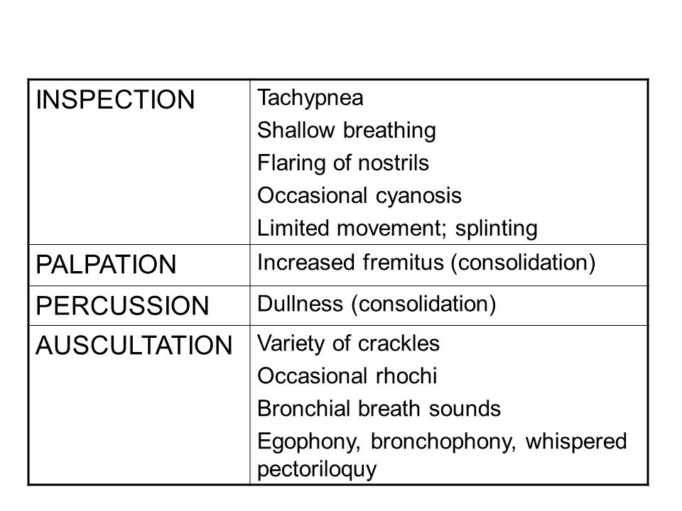 INSPECTION PALPATION PERCUSSION AUSCULTATION Tachypnea
