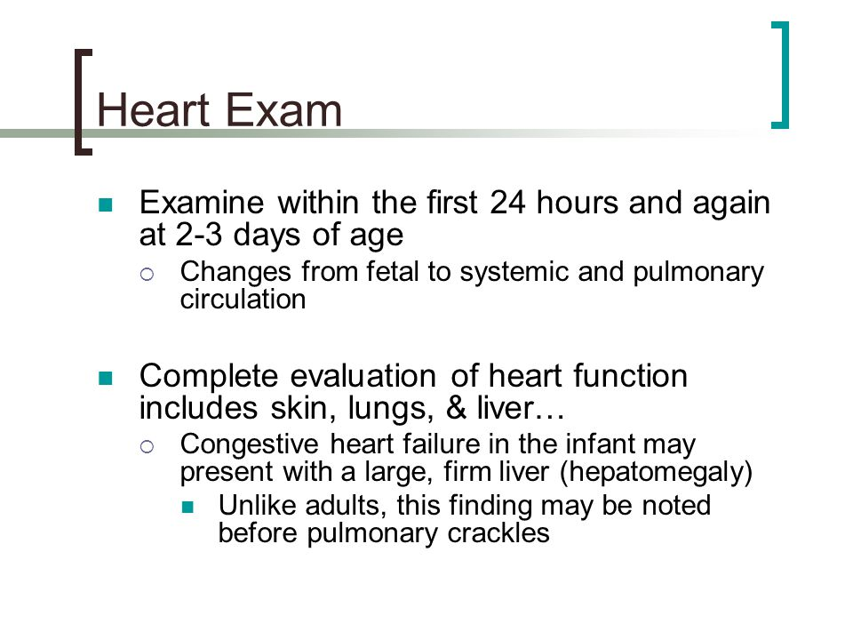 Heart Exam Examine within the first 24 hours and again at 2-3 days of age. Changes from fetal to systemic and pulmonary circulation.
