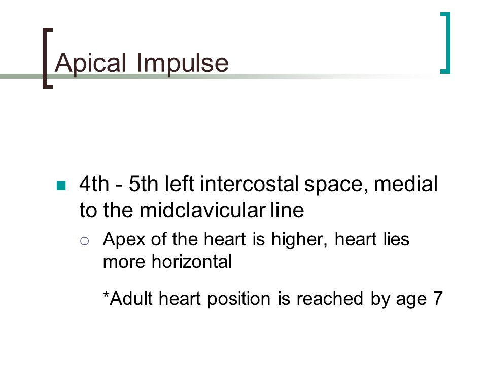 Apical Impulse 4th - 5th left intercostal space, medial to the midclavicular line. Apex of the heart is higher, heart lies more horizontal.