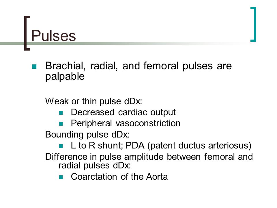 Pulses Brachial, radial, and femoral pulses are palpable