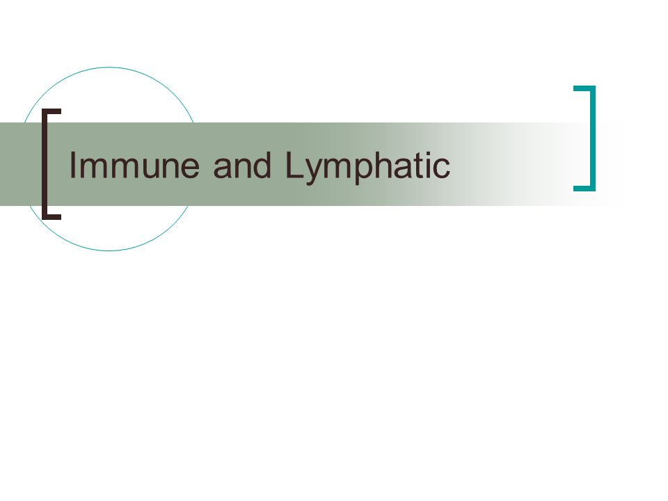 Immune and Lymphatic